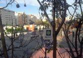 El Ayuntamiento comienza a usar un innovador tratamiento de control biológico contra las plagas en zonas verdes
