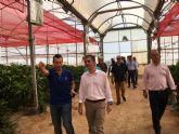 La cooperativa Hortamira dedica el 60 por ciento de su producción a la agricultura ecológica con el objetivo de llegar al 100 por cien