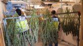 La Policía Nacional desmantela tres puntos de venta de droga en Alcantarilla