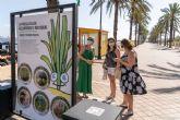 La exposición 'La Pandilla Salada, descubriendo el Mar Menor' llega a Mar de Cristal