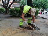 El Ayuntamiento revisa más de 3.000 imbornales situados en los parques y jardines del municipio ante las posibles alertas por lluvias de septiembre