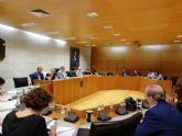 El Pleno acuerda modificar los estatutos de CEDETO para que actúe como empresa privada