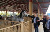 Inaugurada la Feria de Ganado Equino de Puerto Lumbreras 2016