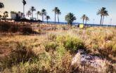 El Ayuntamiento lleva a cabo cuatro limpiezas subsidiarias en solares del municipio