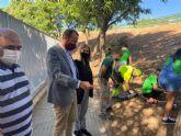 El Plan Hiedra crea perímetros verdes en los parques y jardines y fomenta la concienciación medioambiental
