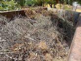 IU-v considera que la Comunidad y el Ayuntamiento dejan sin alternativas a las pequeñas parcelas agrícolas con respecto a los restos de podas