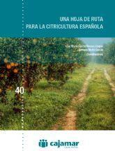 Cajamar plantea una hoja de ruta para el sector de los cítricos en España
