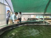 Antonio Luengo pone en valor la producción de microalgas para uso alimentario, farmacéutico o cosmético