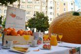 Castellón se incorpora a la Semana del Desayuno de la IGP 'Cítricos Valencianos'