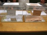 Residentes extranjeros de 12 pa�ses pueden solicitar su inscripci�n en el censo electoral hasta el 15 de enero para votar en las elecciones municipales de 2019