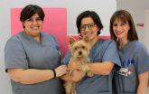El Hospital Veterinario UMU consigue dar una segunda oportunidad a un perro con síndrome de Chiari