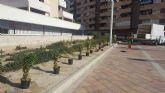 El Ayuntamiento de Molina de Segura ha llevado a cabo trabajos de mejora de la seguridad vial en la carretera que une Altorreal y Murcia