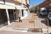 Plantan unas 40 moreras para sustituir otro arbolado seco o podrido en la urbanización 'El Parral'