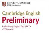 La Bolsa de Idiomas ayuda a preparar el PET de Cambridge a través de un taller online