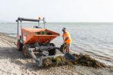 Se intensifican las labores de limpieza y mantenimiento de las playas cartageneras