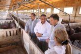 Fulgencio Gil subraya el compromiso social de los ganaderos de porcino con la puesta en marcha del nuevo sello de Bienestar Animal Certificado