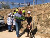 El Plan Foresta llena de ejemplares autóctonos el entorno de Murcia Río