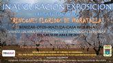 Exposición iª ruta fotográfica 'rincones floridos de Moratalla'