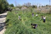 Voluntarios y voluntarias de Molina de Segura celebraron el Día Mundial del Árbol 2017 con una plantación en el Soto de la Hijuela