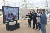Ecodenuncia muestra en el puerto Marina de Las Salinas los efectos de la basura en los fondos marinos