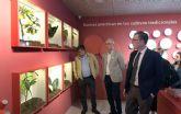 El primer museo interactivo del río y la Huerta abrirá sus puertas en La Contraparada tras el verano