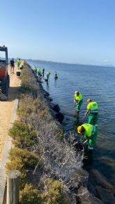 Ayuntamiento y Comunidad refuerzan la retirada de algas y la limpieza en las playas del municipio
