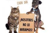 La Policía Local de Cartagena denuncia a 19 personas dentro de la campaña sobre vigilancia de animales de compañía