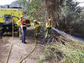 Controlado el incendio originado en el paraje de El Menjú, en Cieza, con cinco hectáreas afectadas