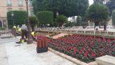 Más de 10.000 ciclámenes inundan de color la Glorieta de España y la Plaza Condestable