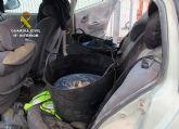 Intervienen más de medio centenar de kilos de pulpo de talla inferior a la mínima en Mazarrón