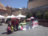 Valoraci�n del pleno Ordinario del 29 de marzo de 2016 - IU-verdes Alhama de Murcia