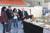 La Feria Nacional de Coleccionismo reúne más de 20.000 artículos de colección en Puerto Lumbreras
