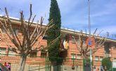 El Ayuntamiento se ve obligado a podar dos ficus del colegio El Parque por motivos de seguridad