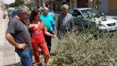 Desarrollo Sostenible elabora un proyecto para la remodelacion de la calle Alfonso XIII de Los Dolores