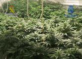 Desarticulado en Murcia y Alicante un entramado delincuencial dedicado al tráfico de drogas