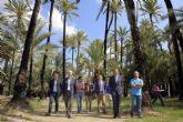 El Ayuntamiento aprueba el plan para la recuperación del histórico palmeral de Zaraiche