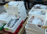 La Guardia Civil sorprende en Murcia a tres personas vendiendo gran cantidad de pescado de forma ambulante