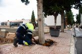 Los cementerios municipales se adec�an para la festividad de Todos los Santos 2018