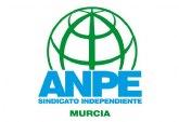 ANPE denuncia la falta de profesorado en Murcia