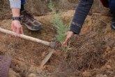 ACUDE y el Ayuntamiento de Alhama plantan 100 ejemplares de tarays en la Alcanara