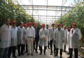 Una delegación del Ministerio de Agricultura visita los invernaderos de tomate de Mazarrón y Águilas