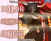 La Asociación GARM (Grupo Animalista Región de murcia) rechaza la corrida de toros a beneficio de la AECC