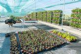 El nuevo Vivero Municipal centrará su labor en la recuperación de especies autóctonas