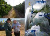 La Guardia Civil investiga a tres personas por utilizar con fines comerciales variedades de frutales protegidas