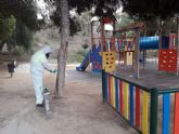 El Ayuntamiento de Águilas aplica una técnica no invasiva, denominada endoterapia, a más de 500 pinos del municipio