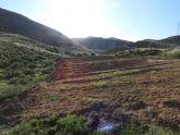 IU-v denuncia roturaciones ilegales en la Sierra de la Almenara