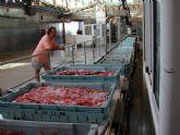 La Comunidad concede ayudas al sector pesquero por valor de 131.700 euros